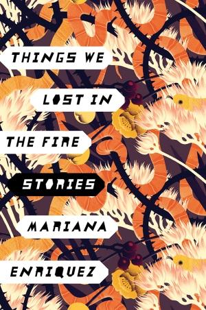 Portada en inglés de Las cosas que perdimos en el fuego, Things we lost in the fire.